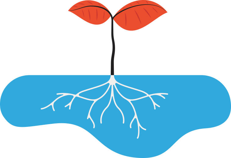 value tree with roots graphic